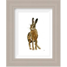 Hare Print Framed Maine