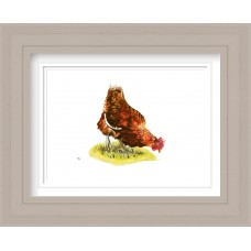 Hen Print Framed Maine