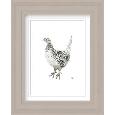 Pheasant Female Print Framed Maine