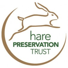 Supporting The Hare preservation Trust