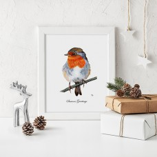 Robin Christmas Print (Frame not included)