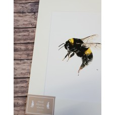 Bumble Bee Mounted Print A4