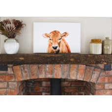 Jersey Cow Wall Canvas