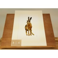 Hare Mounted Print A4